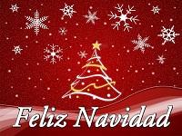 ¡Feliz Navidad y prospero año nuevo!